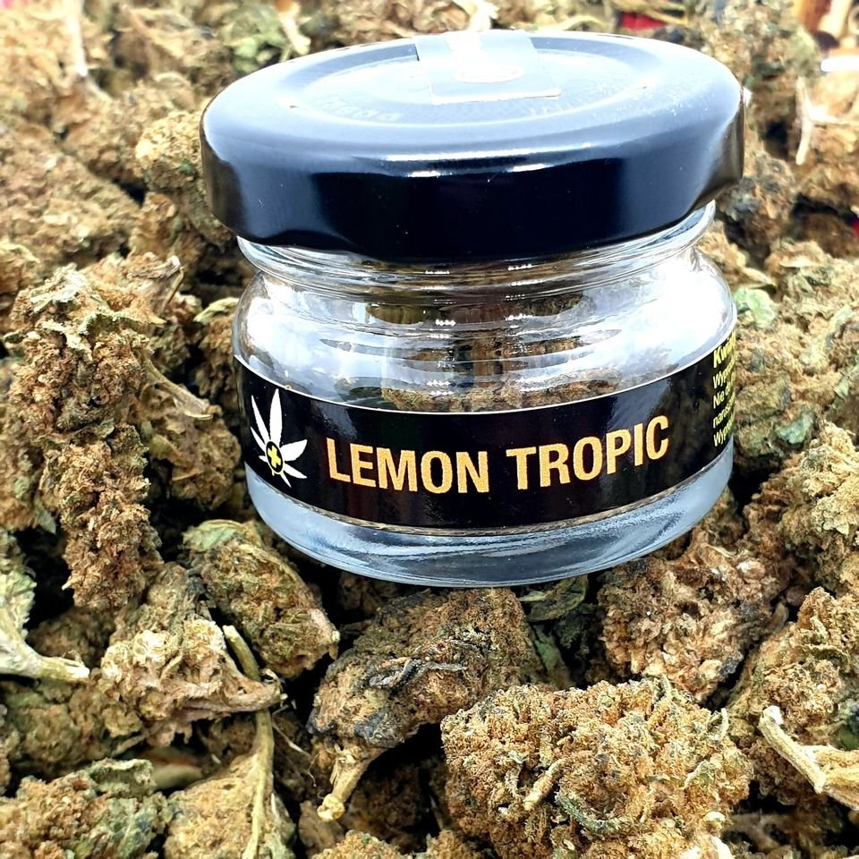 Susz CBD - Lemon Tropic 7,28%